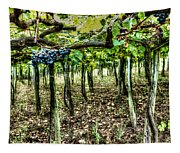 Grapes On A Vineyard Tapestry