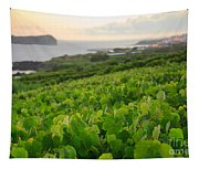 Grapevines And Islet Tapestry