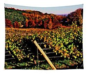 Grapevines In Vineyard, Traverse City Tapestry