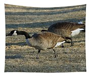 Grazing Geese Tapestry