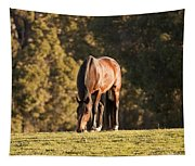 Grazing Horse At Sunset Tapestry