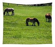 Grazing Horses Tapestry