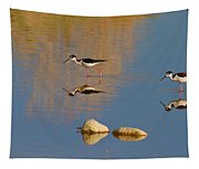 Grazing Stilts Tapestry