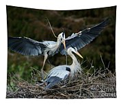 Great Blue Herons Nesting Tapestry