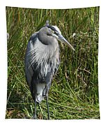 Great Blue Waiting For Prey Tapestry