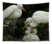 Great Egret Family 2 Tapestry