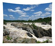 Great Falls On The Potomac Tapestry