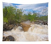 Great Falls White Water #5 Tapestry