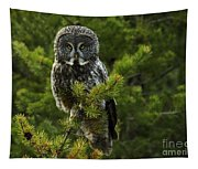 Great Grey Owl Tapestry