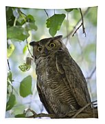 Great Horned Owl On A Branch  Tapestry