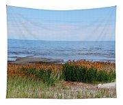 Great Salt Lake Tapestry