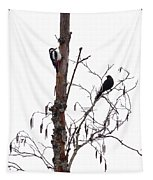 Great Spotted Woodpecker And A Blackbird. Dude What Are You Doing Tapestry