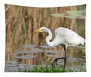 Great White Egret By The River Too Tapestry