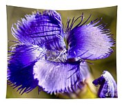 Greater Fringed Gentian Tapestry
