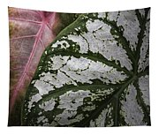 Green And Pink Caladiums Tapestry