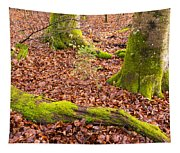 Green And Red Nature In The Forest Tapestry
