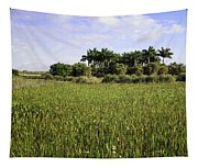 Green Cay Wetlands Tapestry