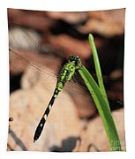 Green Dragonfly On Grass Square Tapestry