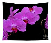 Green Field Sweetheart Orchid No 2 Tapestry