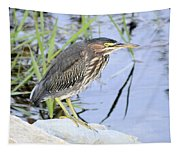 Green Heron 2 Tapestry