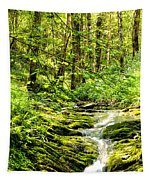Green River No2 Tapestry
