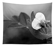 Green Sweet Pea Flower In Black And White Tapestry