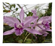 Greenhouse Ruffly Orchids Tapestry