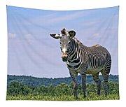 Grevy's Zebra Tapestry
