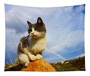 Grey Cat And Rainbow Tapestry
