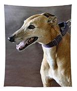 Greyhound Dog Tapestry