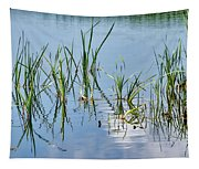 Greylake Reflections Tapestry