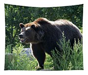 Grizzly-7756 Tapestry