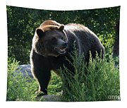 Grizzly-7759 Tapestry