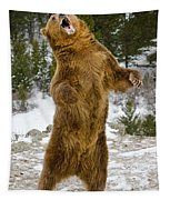 Grizzly Standing Tapestry
