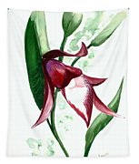 Ground Orchid Tapestry