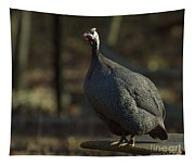 Guinea Chicken Tapestry