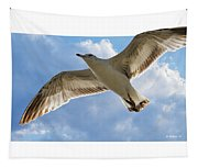 Gull - Out Of Bounds Tapestry