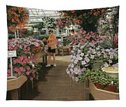 Haefner's Garden Center Impatiens Tapestry