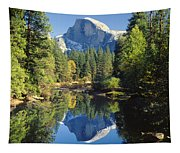 2m6708-half Dome Reflect Tapestry