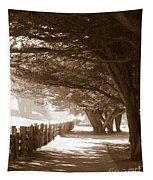 Half Moon Bay Pathway Tapestry