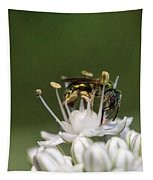 Halicid Bee Amongst The Anthers Tapestry
