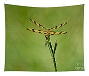 Halloween Pennant Dragonfly Tapestry