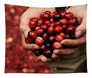 Handful Of Fresh Cranberries Tapestry