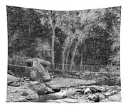 Hanging Bridge In Black And White Tapestry