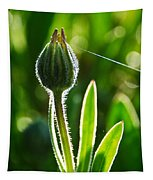 Hanging By A Thread Tapestry
