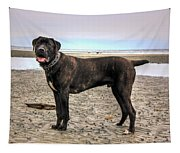 Happy Bandog On The Beach Tapestry
