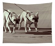 Happy Dogs 14 Tapestry