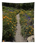 Happy Trails Tapestry