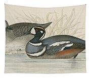 Harlequin Duck Tapestry