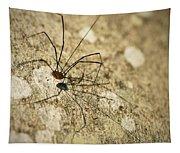 Harvestman Spider Tapestry